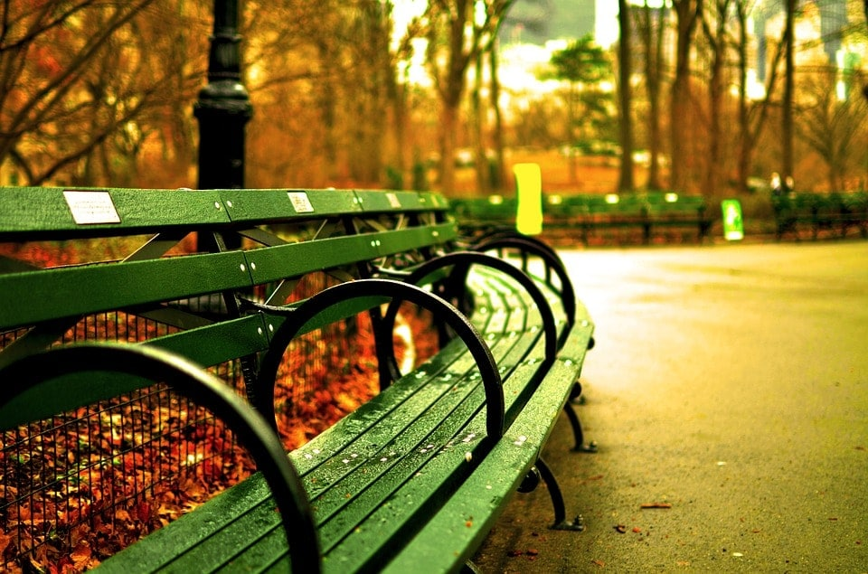 green bench in NYC park