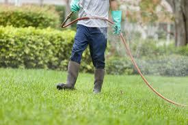 Flea Exterminator Spraying Yard