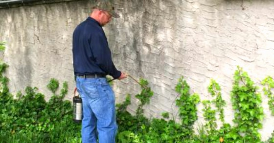 an exterminator is treating pests in someone's yard