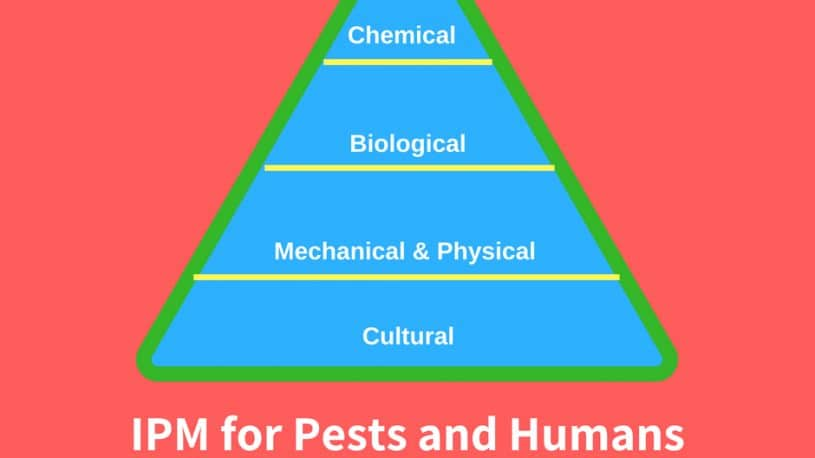 Integrated Pest Management: Definition & Benefits of IPM image