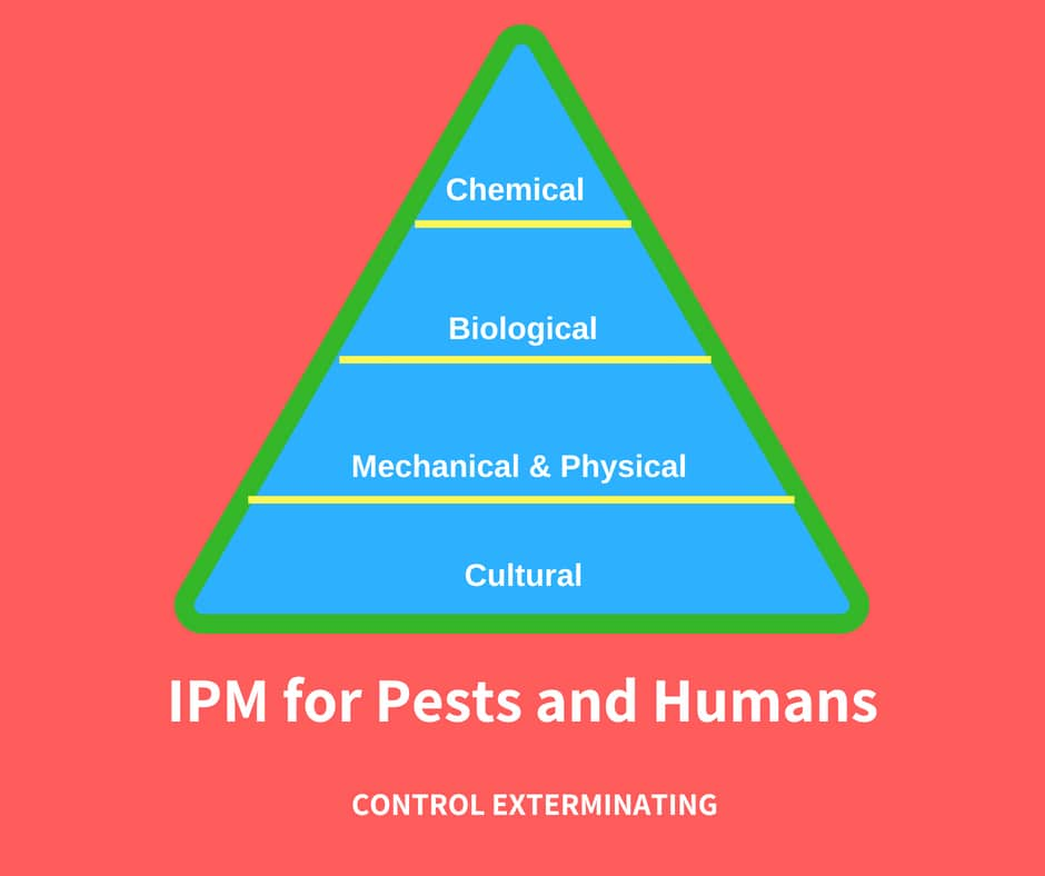 Integrated Pest Management: Definition & Benefits of IPM, Control Exterminating
