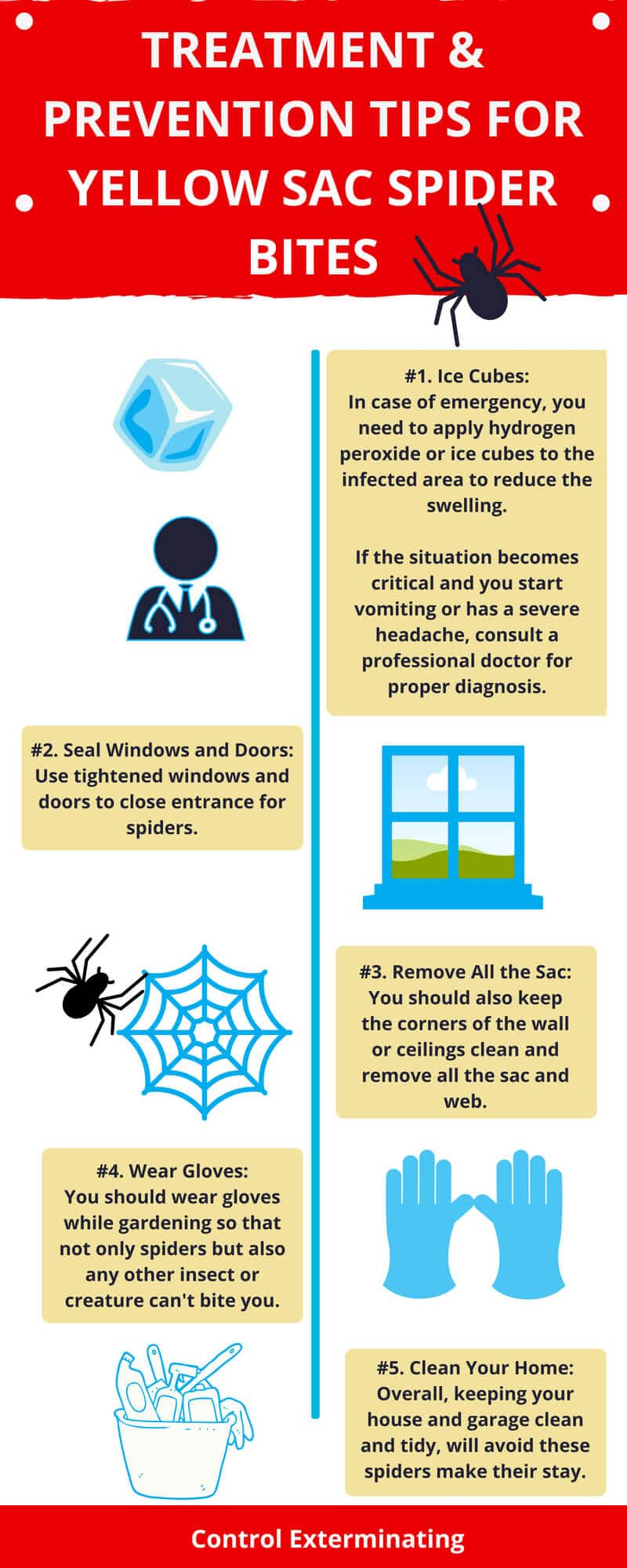 Yellow Sac Spider Bite: Are Their Bites Dangerous? Infographic